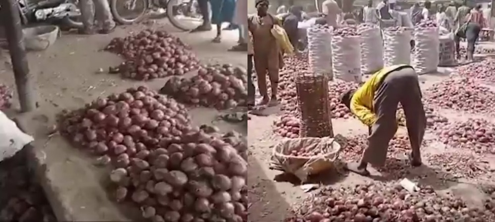 Kano Traders Laments As Onion Bag Sold In South For N35k Crashes To N7k In The North 1