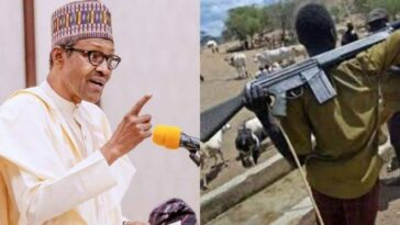President Buhari Directs Security Agents To Shoot Anyone Seen With Guns Like AK-47 9