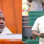 Nigerians Abroad Don't Have Rights To Complain About Killer Herdsmen - House Of Reps [Video] 9