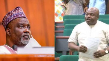 Nigerians Abroad Don't Have Rights To Complain About Killer Herdsmen - House Of Reps [Video] 5