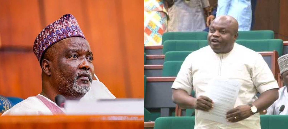 Nigerians Abroad Don't Have Rights To Complain About Killer Herdsmen - House Of Reps [Video] 1