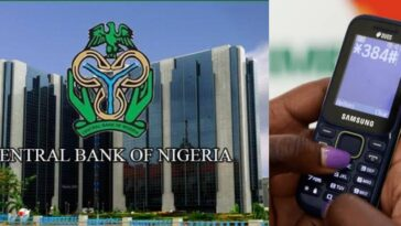 Nigerians To Pay N7 For Every USSD Transaction As CBN Imposes New Bank Charges 7
