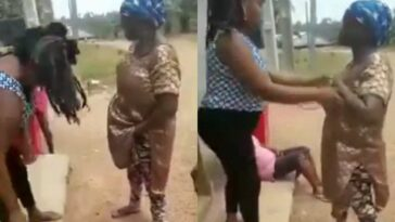 Two Nigerian Farm Workers Caught With Over 3 Crates Of Egg Hidden In Their Bodies [Video] 4
