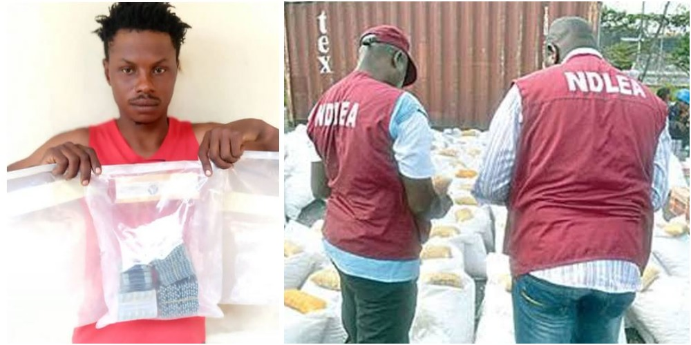 NDLEA Arrests Chadian Man Who Supplies Drugs To Boko Haram Members In Taraba 10