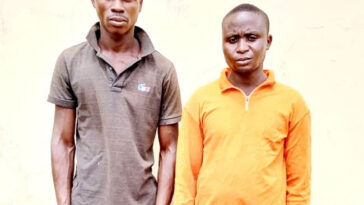 Herbalist Paid Me N9,000 After Killing Mother And Her Son For Money Ritual - Ogun Bricklayer 4