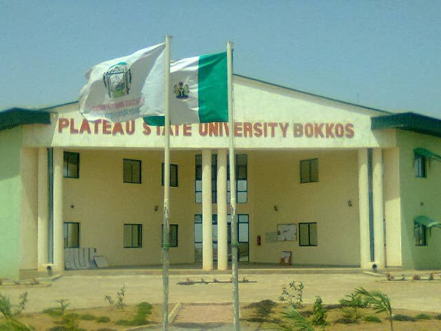 100 Level Plateau University Student Falls Off Vehicle, Dies While Protesting Insecurity 1