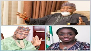Adeosun's Certificate Forgery Is Worse Than Pantami's Comments On Terrorists - Garba Shehu 2