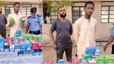 Police Arrests 23-Year-Old Man Who Stole 273 Phones Worth N15 Million In Katsina [Photos] 3