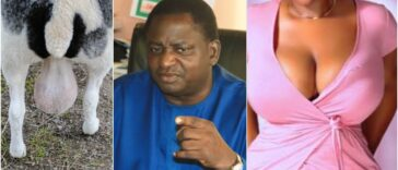 "Buhari's Aide, Femi Adesina Describes Nigeria As ""Testicles Of A Ram Or Woman's Breasts"" 25"