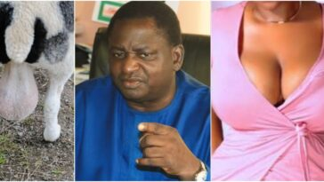"Buhari's Aide, Femi Adesina Describes Nigeria As ""Testicles Of A Ram Or Woman's Breasts"" 2"