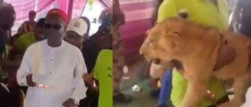 Businessman Storms His Father's Burial Ceremony With A Lion In Anambra [Video] 24