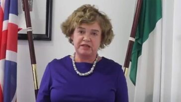 UK Would Be Struggling If We Had One Of Nigeria's Problems — British High Commissioner 6