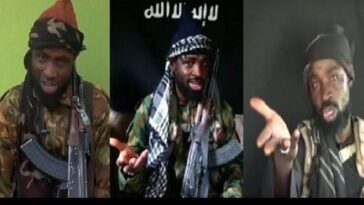Boko Haram Leader, Abubakar Shekau Reportedly Killed By ISWAP In Sambisa Forest 2