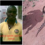 Nigerian Man Gets Killed By 'Spiritual Snake' Allegedly Sent By Unknown Person In Edo 28