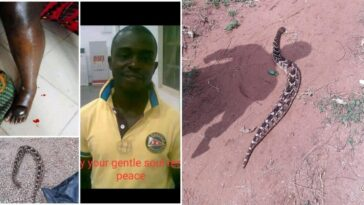 Nigerian Man Gets Killed By 'Spiritual Snake' Allegedly Sent By Unknown Person In Edo 6