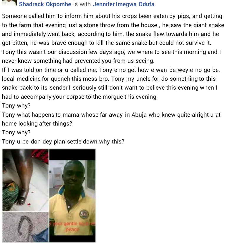 Nigerian Man Gets Killed By 'Spiritual Snake' Allegedly Sent By Unknown Person In Edo 3
