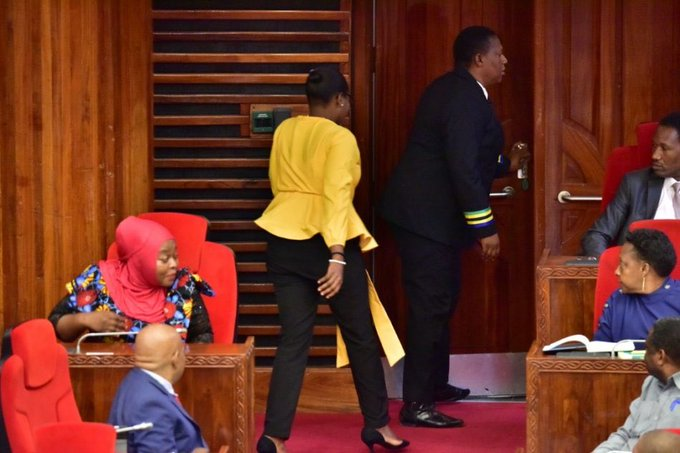 Tanzania Female Lawmaker Thrown Out From Parliament For Wearing Tight Trousers [Photos] 3
