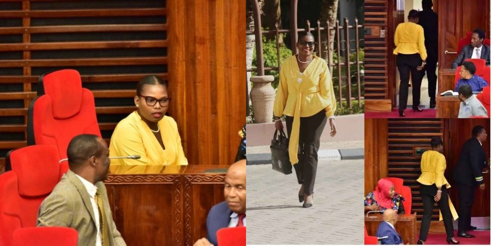 Tanzania Female Lawmaker Thrown Out From Parliament For Wearing Tight Trousers [Photos] 1