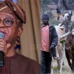 INSECURITY: Osun Government Plans To Issue ID Cards To Fulani-Bororo Herdsmen 27