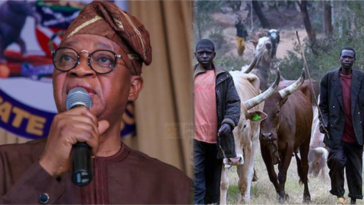 INSECURITY: Osun Government Plans To Issue ID Cards To Fulani-Bororo Herdsmen 12