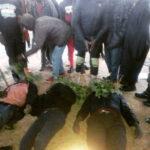 Seven Person Killed, 250 Houses Burnt As Suspected Fulani Militias Attack Plateau