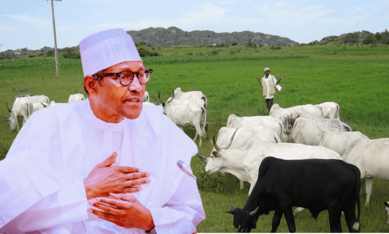 President Buhari Approves Review Of 368 Grazing Reserves In 25 States For Herders