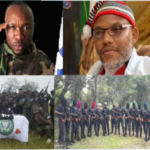 IPOB, Cameroon secessionists