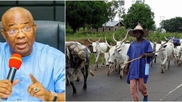 Uzodinma Goes Against Southern Governors, Approves Open Grazing In Imo State