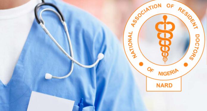 NARD Strike: Nigerian Govt Stops Doctors' Salaries, Invokes 'No Work, No Pay' Rule