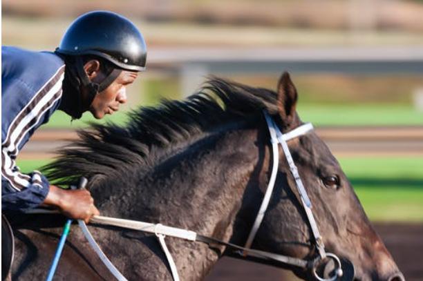 Horse Racing in Nigeria