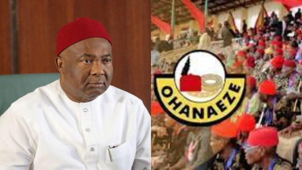 2023: Governor Uzodinma Is A Traitor, He's Suffering From Verbal Diarrhea - Ohanaeze