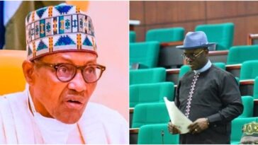 Nigerian Lawmaker Detained And Treated Like A Suspect In Ghana Over Buhari's Comment