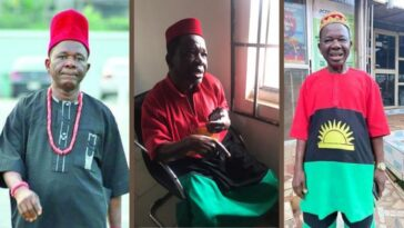 Actor Chiwetalu Agu Reveals How Soldiers, DSS Treated Him While In Their Detention