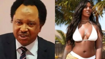 Leaked Sex Tape Tiwa Savage Would Make Me Faint - Senator Shehu Sani