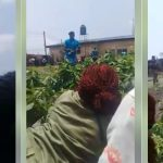 Moment Corps Members, INEC Staff Hid In A Bush After Thug Invasion During Election In Rivers [Video] 28