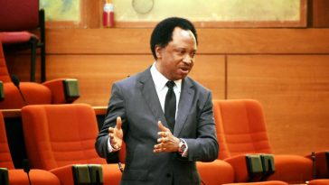 Shehu Sani Backs Buhari's Call That PDP Should Explain How They Squandered $592 Billion 6