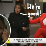 R.Kelly's Girlfriends Defend Him, Attack Their Parents For Trying To Get Back At Singer [Video] 9